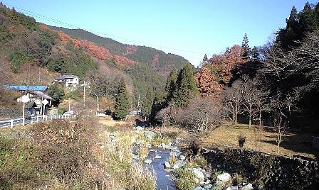 2007120805.jpg