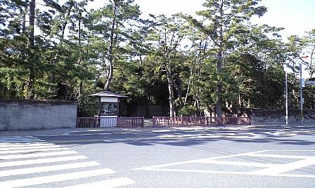 2008010218.jpg