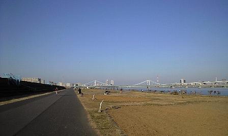 2008010503.jpg