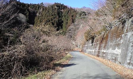2008010607.jpg
