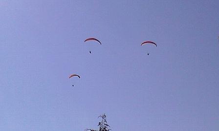 2008010615.jpg