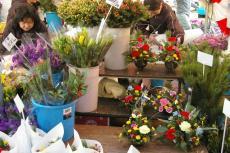 三浦まぐろ祭り花屋