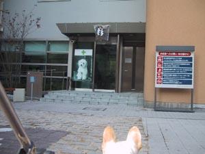 11070126VEセンター2