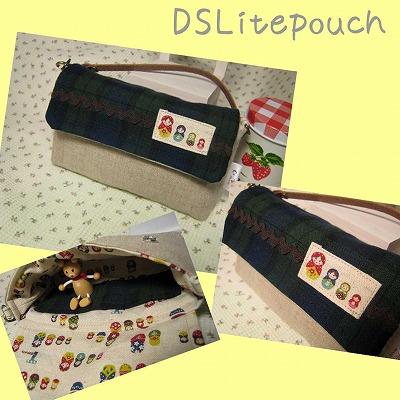 DSpouch 1