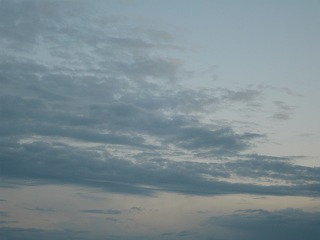 清々しい朝です(^v^)