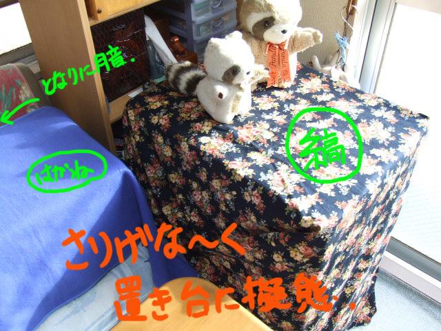 DSCF0190a.jpg