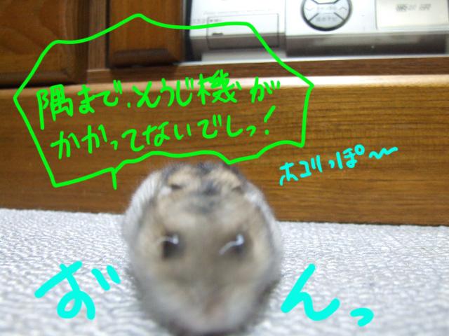 DSCF8499a.jpg