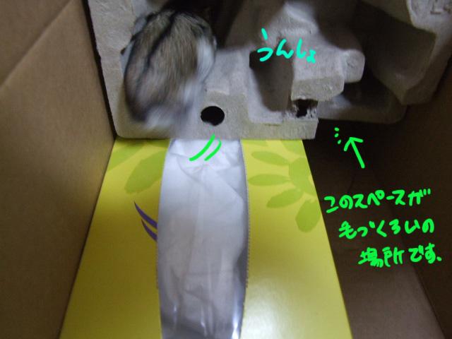 DSCF9915a.jpg