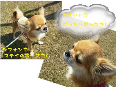 P9010864_edited-1.jpg