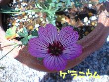 TS310164.jpg