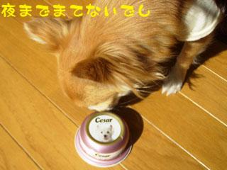 fbn.jpg