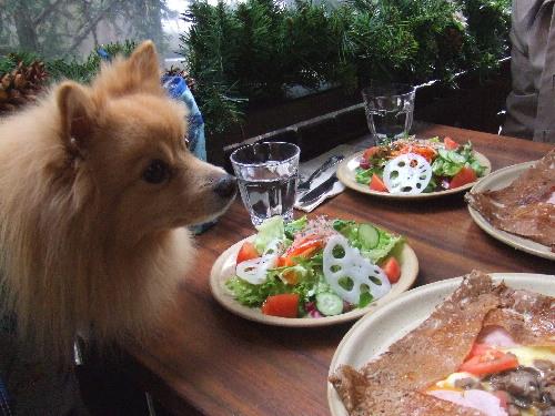 レオも食べたいね