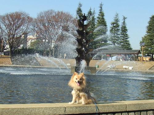 世田谷公園で