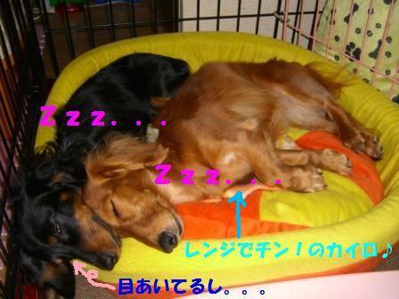 b8_20071221043957.jpg