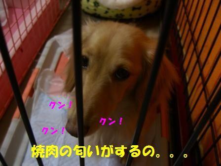 shi-to3.jpg