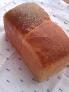 12月18日 丹沢酵母でくーぷトースト 全体
