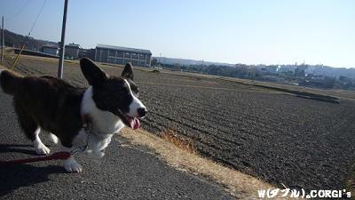 GO!GO!