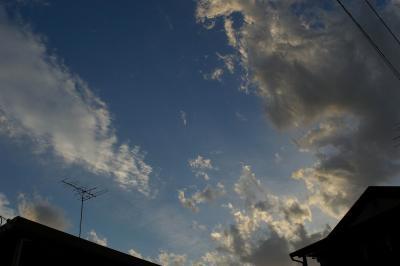20071118_1.jpg