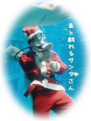 サンタクロースが水槽に!