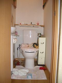 トイレ荒らし1