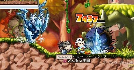 Maple0008_20071224085826.jpg