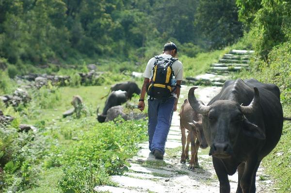 15_nepal_himalaya_042.jpg