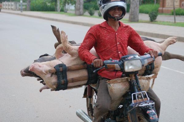9_cambodia_011.jpg