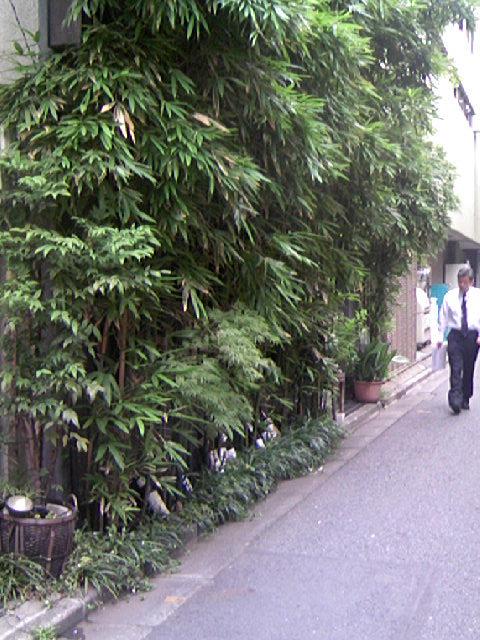 八丁堀日本料理店の竹林