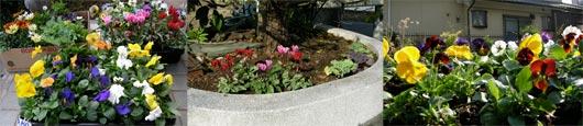 11月の庭