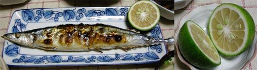 秋刀魚とかぼす