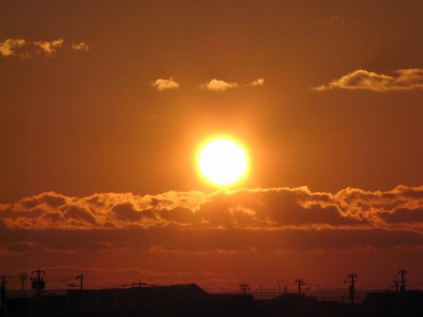 あったか~~い朝の光です。。