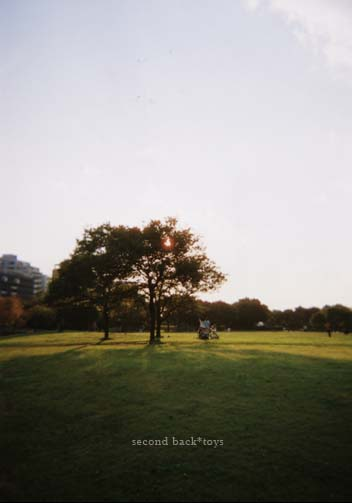p32.jpg