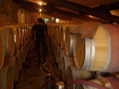 ワイン倉1