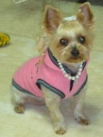 ピンク正面
