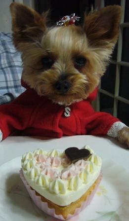 ケーキ前で