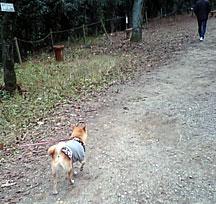 20080105-3.jpg