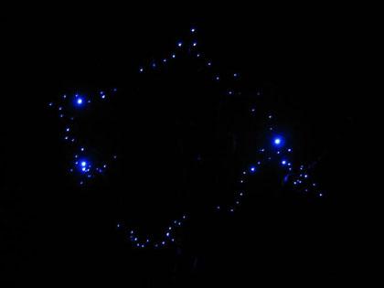 sibuiru-2.jpg