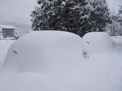 大雪で隠れた車