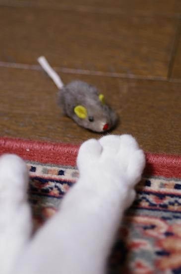 ネズミ年14