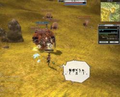rappelz_screen00000109.jpg