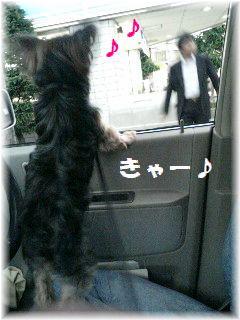 車でお迎え-5