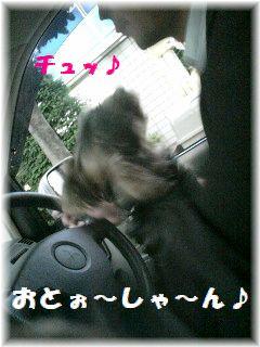 車でお迎え-6