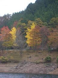 20071119-1.jpg