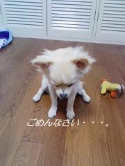 060921_150942.jpg