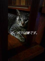 071124_201037.jpg
