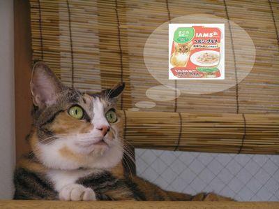 あたしの猫缶だって・・・