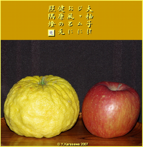 1222大柚子