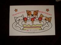 誕生日カード・SACCOから