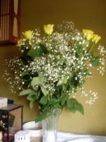 黄色のバラの花言葉は『嫉妬』だった・・・