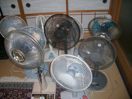 大勢の扇風機さんたち…